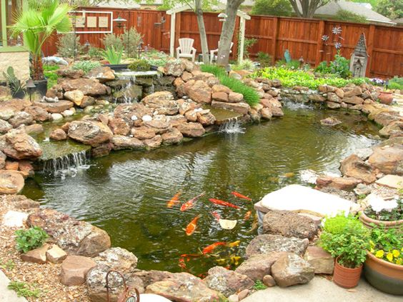 Koi ponds gallery sublime water garden construction for Fish pond materials