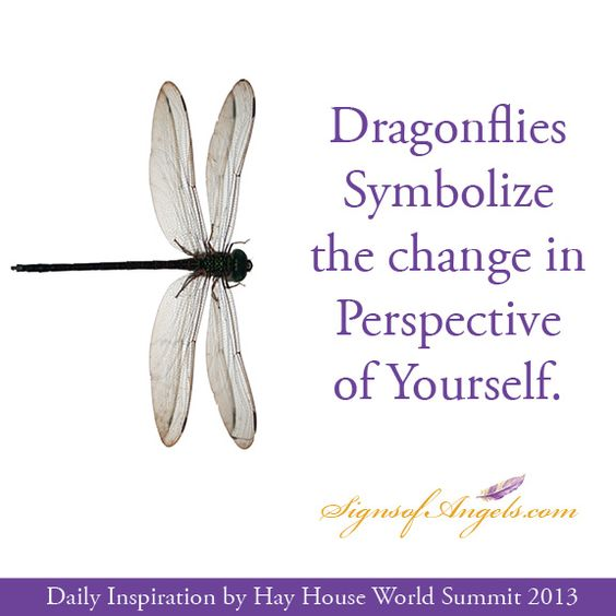 Dragonflies symbolize the change in perspective of for Tattoos that symbolize change
