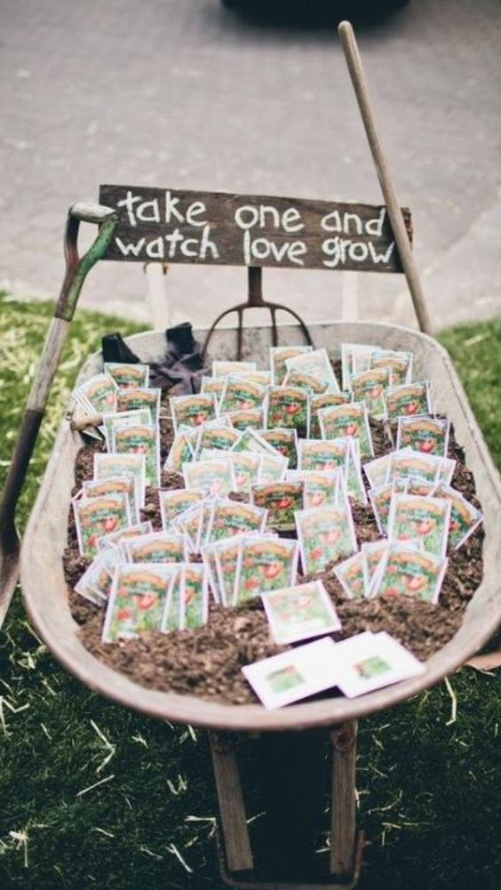 Ta, that could be cool to have? maybe some sunflower seeds? just an idea and wont cost much! #weddingfavors #weddinggiveaways