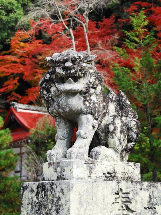 Panoramio - Photo of Izumo Dajingū / 出雲大神宮(京都府亀岡市)
