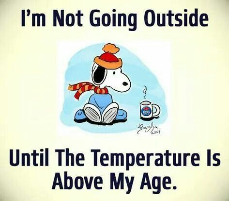 Image result for i'm not going outside until the temperature