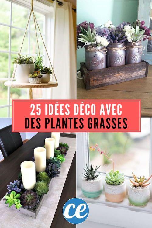 25 Super Idees Deco Avec Des Plantes Grasses Succulentes Garden