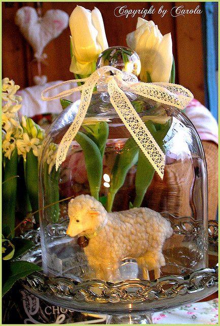 spring #cloche #vignette #lamb #spring #