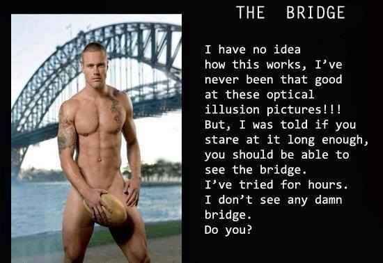 Nope, I don't see a bridge either!