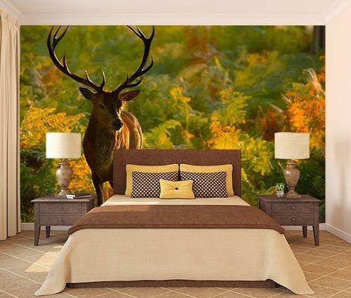 Why Wallpaper Is A Better Choice Than Paint Home Decor Buzz 3d Wallpaper India Main Bedroom Traditional Paint