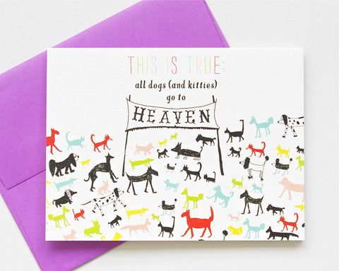 All Dogs & Kitties go to Heaven Card by Mr. Boddington