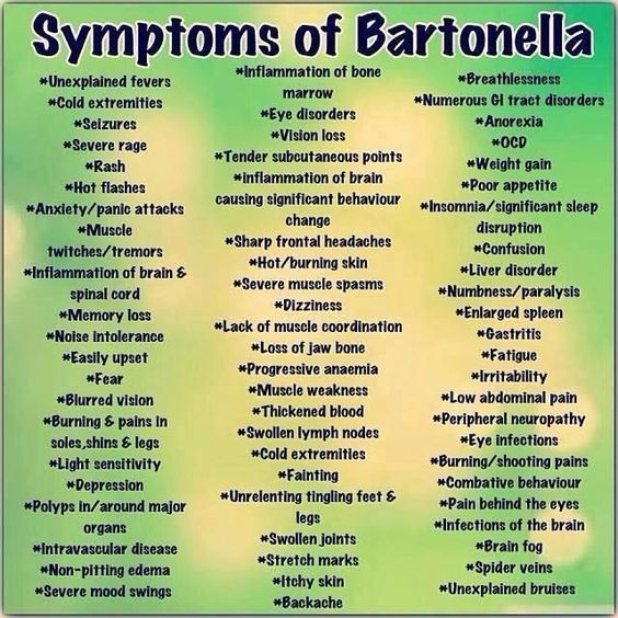 Symptoms of #Bartonella a very common co-infection with #Lyme Disease At my worst, I had more than half of the symptoms on this list. Now I continue to experience some of these symptoms, they are merely not as severe.