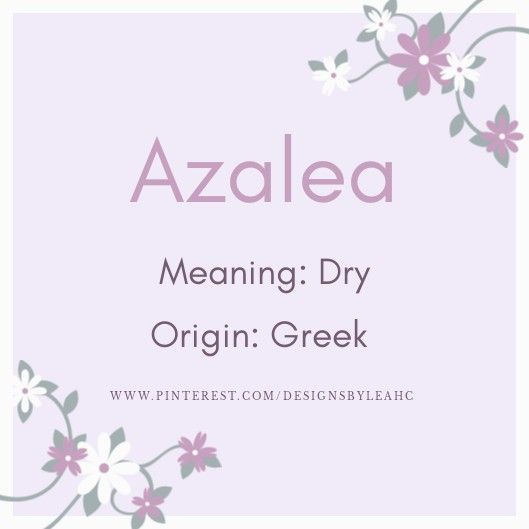Azalea Baby Names And Meanings Names With Meaning Azaleas
