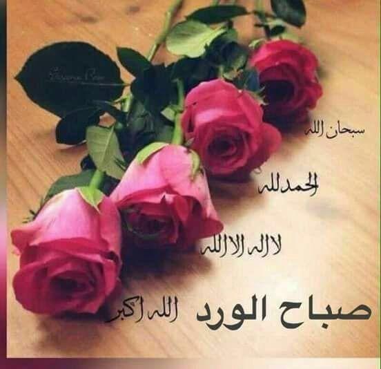صباح الورد Rose Greetings Flowers