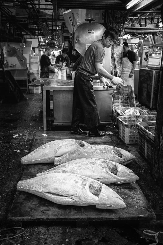 Tsukiji fish market by Mark Keelan on 500px