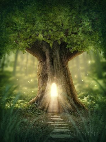 Fantasy Tree House with Light in the Forest Photographic Print by egal at AllPosters.com