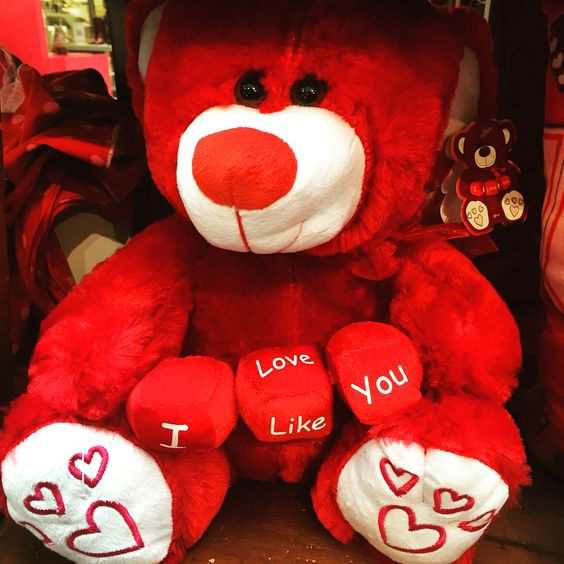 Celebrate Valentine everyday ❤️