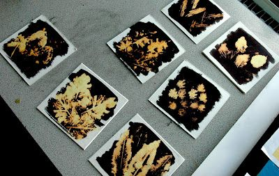 botanical prints using india ink and bleach - would do with yr 9-10 - tutorial at arteascuola