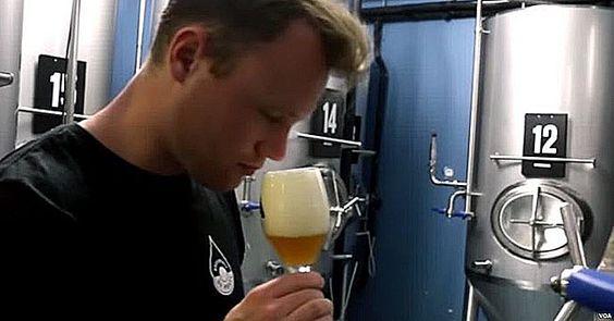 Birra dall'acqua piovana, accade in Olanda