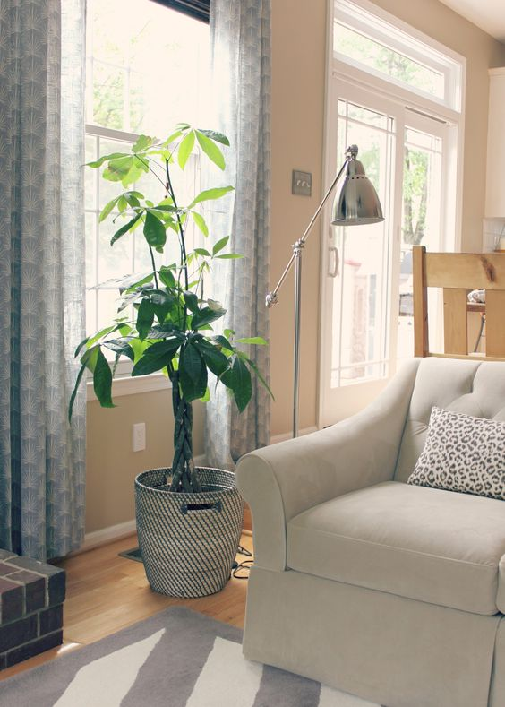 Ikea Hocker Karlstad Isunda Grau ~ trees different patterns living rooms the plant floor lamps lamps