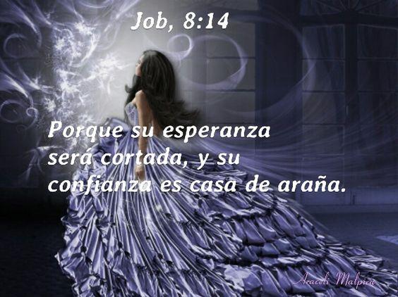 Job, 8:14 - Porque su esperanza será cortada, y su confianza es casa de araña.