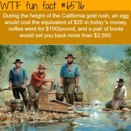 Image result for wtf fun fact gold rush