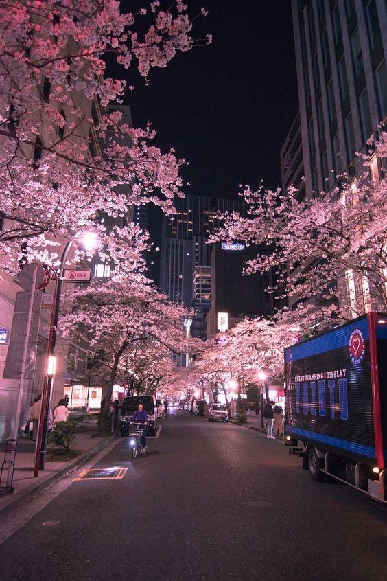 Pin By Guiyo Perez On Gelecek In 2020 City Aesthetic Night Aesthetic Japan Photography