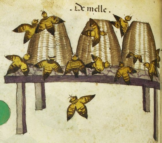 Early American Gardens: Bees & beehives from medieval Illuminated Manuscripts: