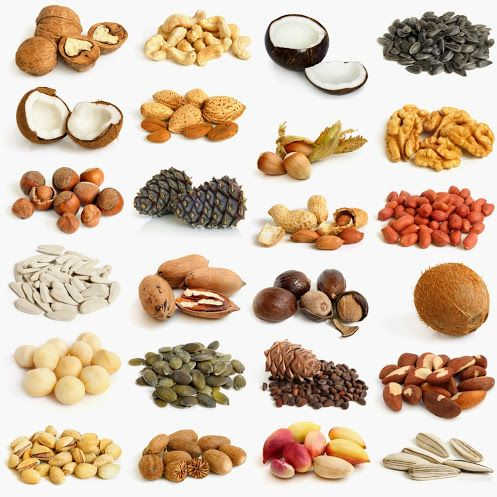 Difference between: tree nuts and pine nuts.