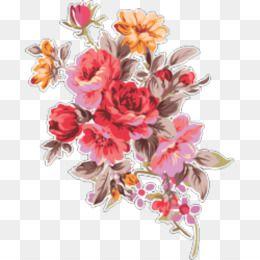 Japanese Camellia Photography Flower Flower Flowers Photography Pink Flowers Flowers