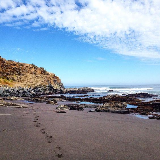 Punta de Lobos Beach, Pichilemu Chile