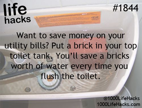 Life hack to save water! #ArkLabs