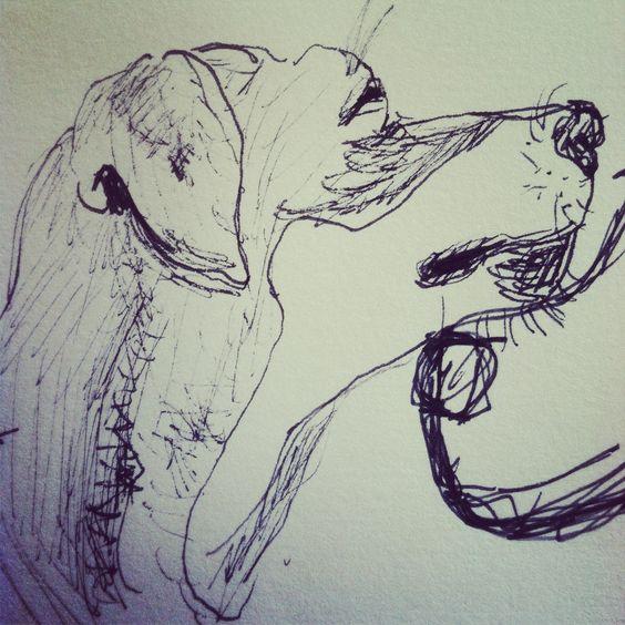 Sketch of the pooch.