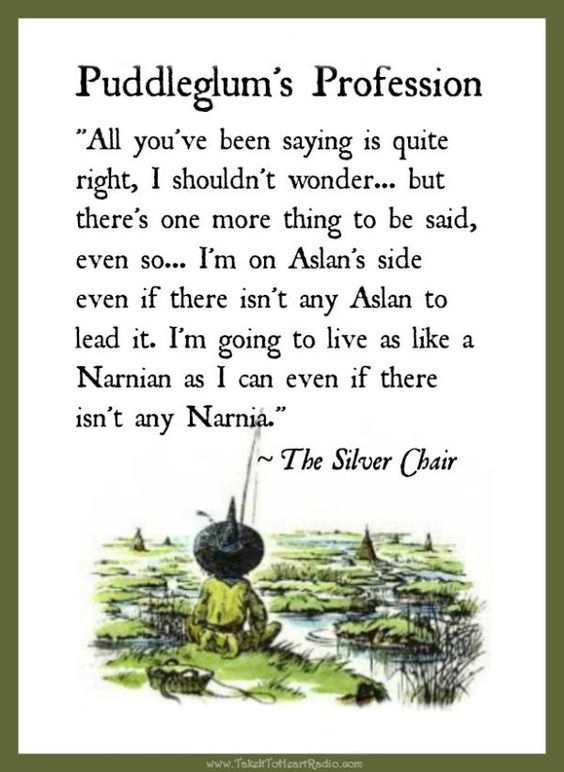 an analysis of the silver chair by c s lewis Study guide for the silver chair the silver chair study guide contains a biography of c s lewis, literature essays, quiz questions, major themes, characters, and a full summary and.