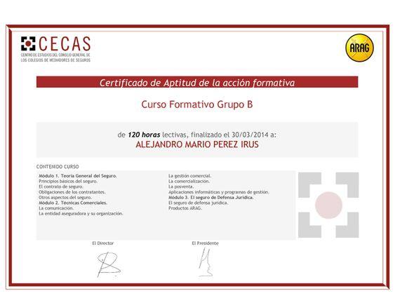 2014 ARAG Certificado Curso Formacion en Seguros Aseguradoras Comercializacion Comerciales Grupo B de Alejandro Pérez Irús AlejandroPI