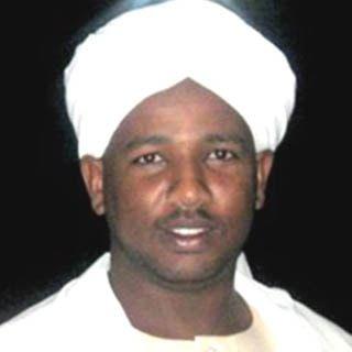 - الشيخ الزين محمد أحمد