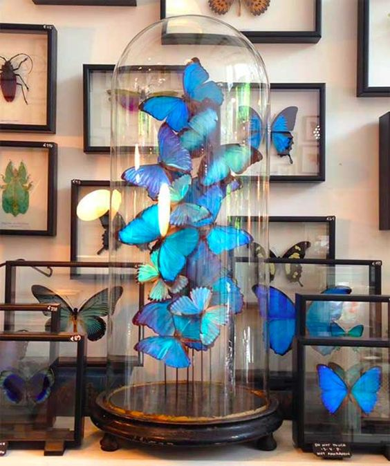Glasglocke mit Schmetterlinge