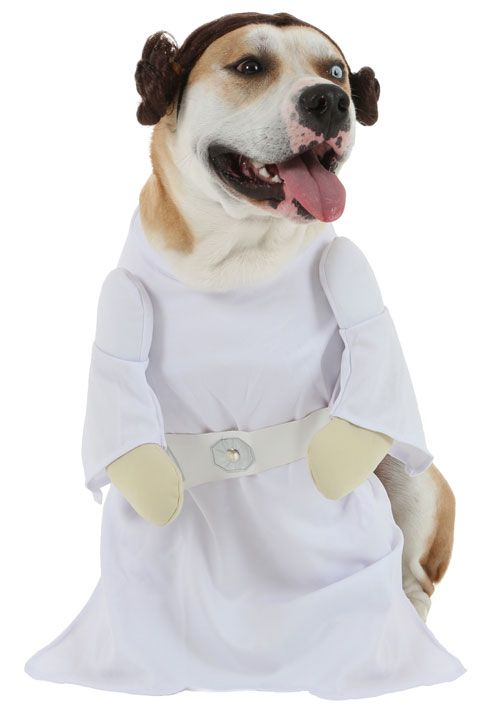 Epic Dog Halloween Costumes Ideas Pet Halloween Costumes Dog