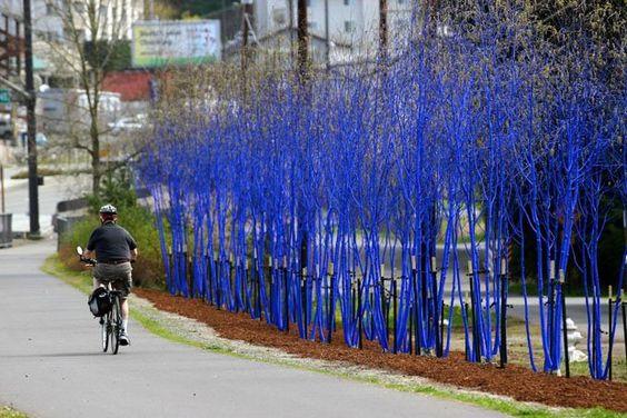 Intervenção Urbana pela preservação do Meio Ambiente