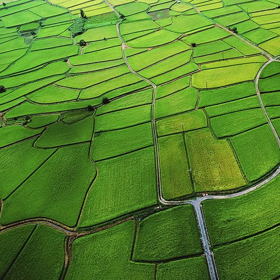 Papers.co | md26-wallpaper-green-from-sky-aerial | get this wallpaper: http://goo.gl/gOi9lb mountain-view