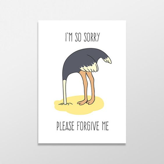 Funny Apology Card I M Sorry Card Please Forgive Me Etsy Im Sorry Cards Apology Cards Sorry Cards