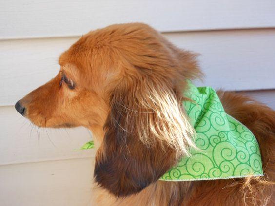 Small Medium Dog Bandana  Green Swirls by Joanna1966 on Etsy,
