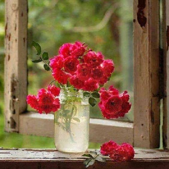 A primavera chegará, mesmo que ninguém mais saiba seu nome, nem acredite no calendário, nem possua jardim para recebê-la. (Cecília Meireles)