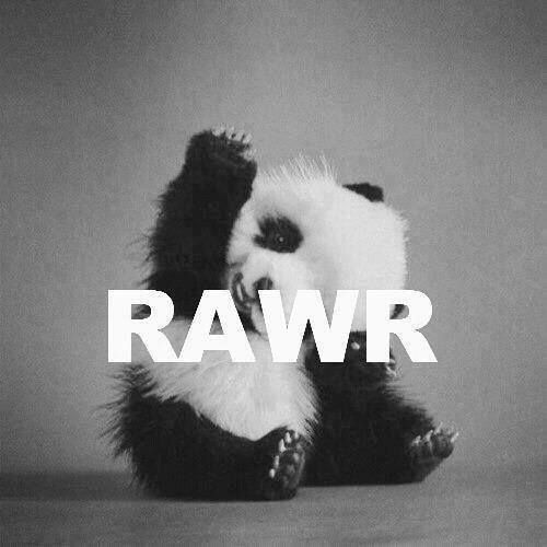 Cute panda tumblr themes - photo#2
