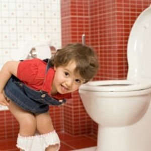Steps To Toilet Train Your Toddler