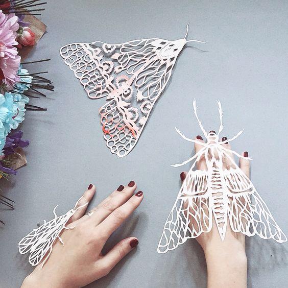 Paper cut moth: