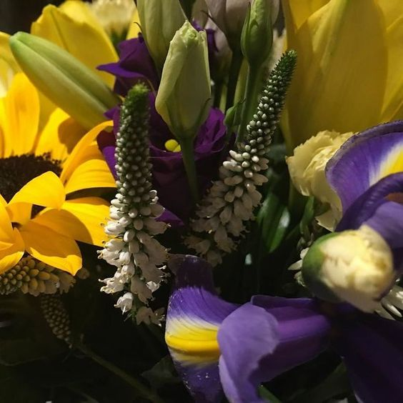 We adore this colour combination of cut flowers delivered today! #iris #sunflowers #lithianthus #colour