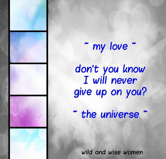 ~ my love ~ don't you know I will never give up on you?