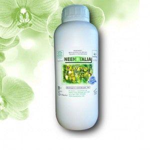 olio di neem puro 1lt