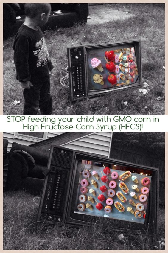 GMO = power to manipulate the genes and evolution