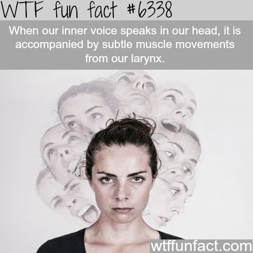 Voices in your head are accompanied by muscle movements…- WTF fun facts