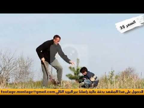مشهد نهاري عن النماء لرجل وابنه يقومان بزرع شجيرة لأعمال المونتاج 3863597 Rayban Wayfarer Mens Sunglasses Lins