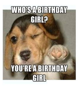 101 Funny Happy Birthday Dog Memes For Paw Lovers Everywhere Happy Birthday Dog Meme Happy Birthday Animals Dog Lovers Birthday