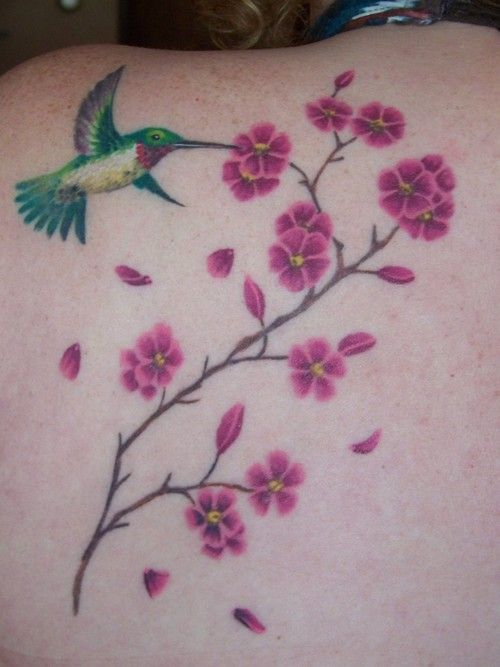 hummingbird tattoos cherry blossoms with hummingbird. Black Bedroom Furniture Sets. Home Design Ideas
