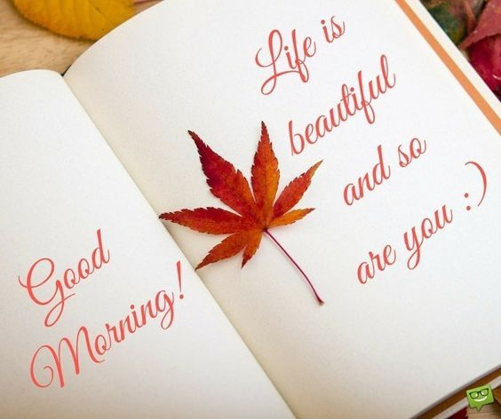 Good Morning! Life is beautiful and so are you <img src=